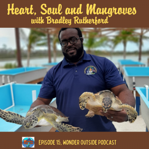 Heart, Soul and Mangroves with Bradley Rutherford